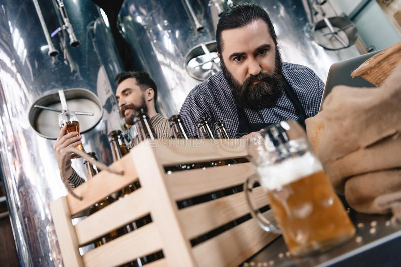 Concentrated man is watching at beer mug while another man looks at density of beer. Concentrated men is watching at beer mug while another men looks at density royalty free stock images