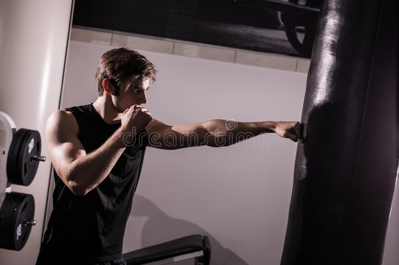 Concentrated muscular kickbox fighter exercising with punch bag on white in gym royalty free stock images