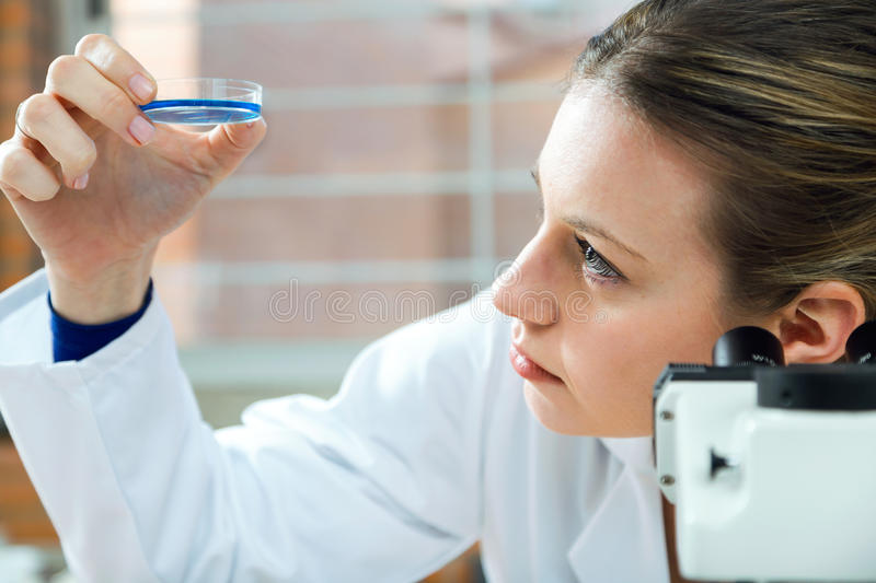 Concentrated scientist making experiment in laboratory. stock photography