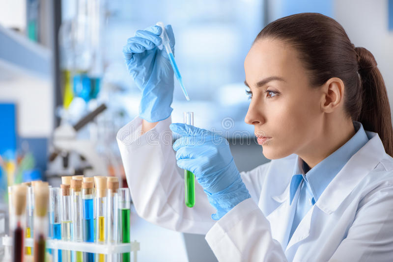 Concentrated scientist working with laboratory tube. Side view of concentrated scientist working with laboratory tube royalty free stock photo