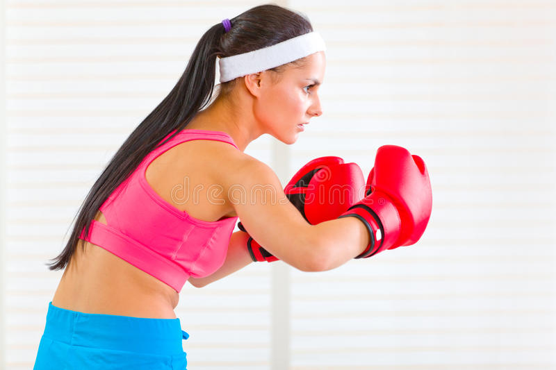 Concentrated woman in boxing gloves working out. Concentrated fitness woman in boxing gloves working out at living room stock photography
