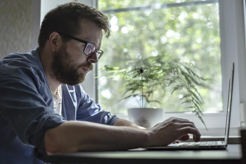 Concentrated, bearded man in glasses works with a laptop at home, against the window and flower, early in the morning stock photo