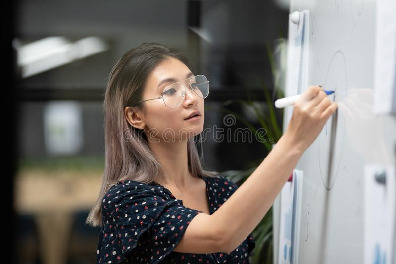 Concentrated young vietnamese speaker coach painting graphs on white board. Side view head shot concentrated young vietnamese speaker coach drawing graphs on royalty free stock photos