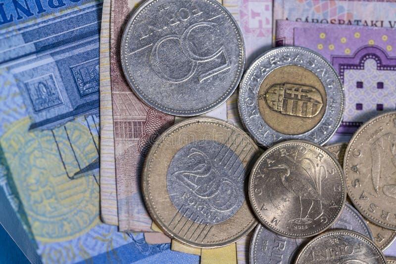 Concepção húngara do grupo das cédulas e das moedas da forint fotografia de stock