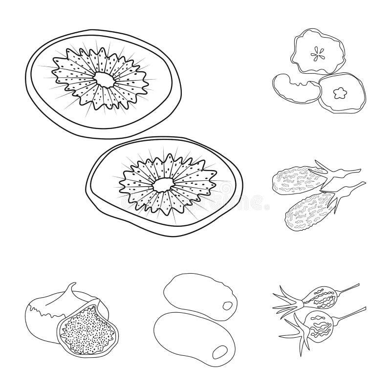 Concepção vetorial dos alimentos e do logótipo bruto Conjunto de ilustrações do vetor alimentar e natural ilustração do vetor
