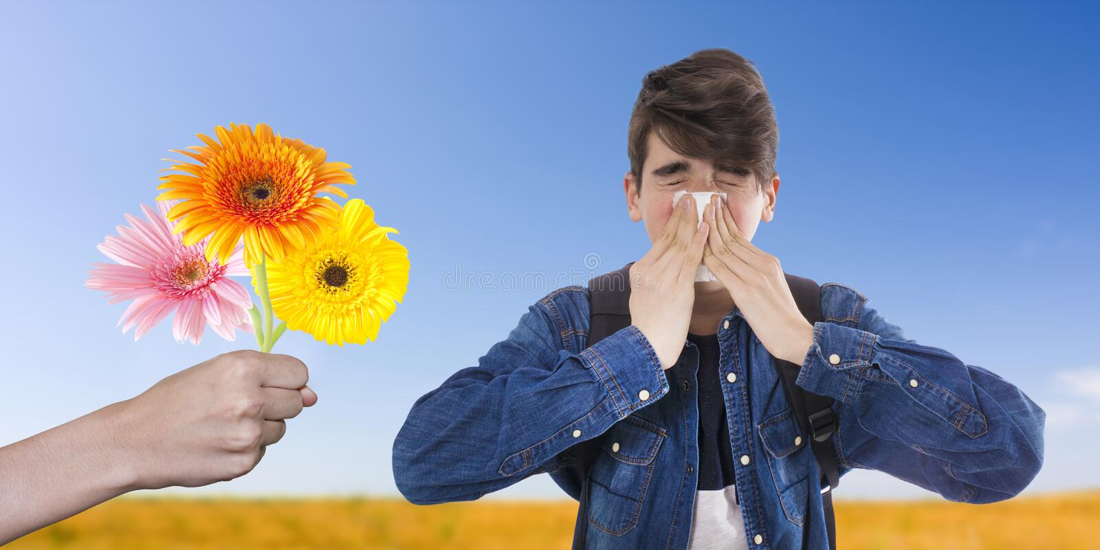 Concept of allergy to spring and pollen royalty free stock photo