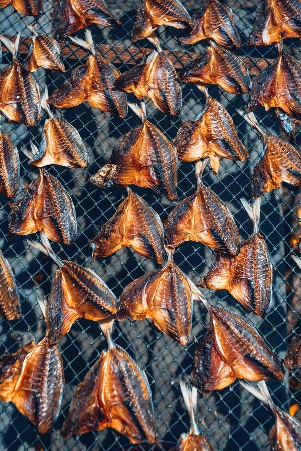 Concept asiatique sec de cousine de modèle de bain du soleil de poissons photographie stock