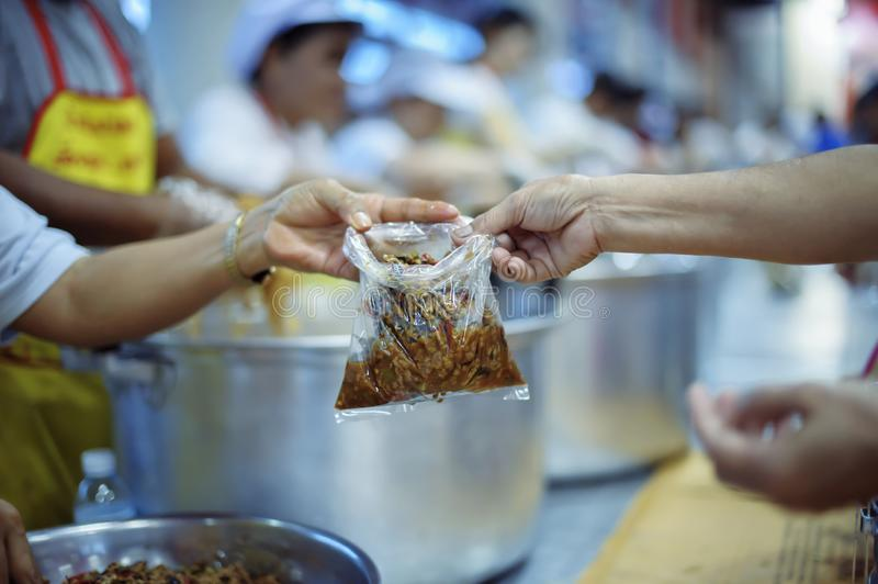 The concept of begging food : donating food is helping human friends in society.  royalty free stock photos