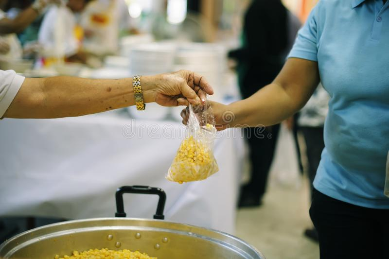 The concept of begging food : donating food is helping human friends in society.  royalty free stock images