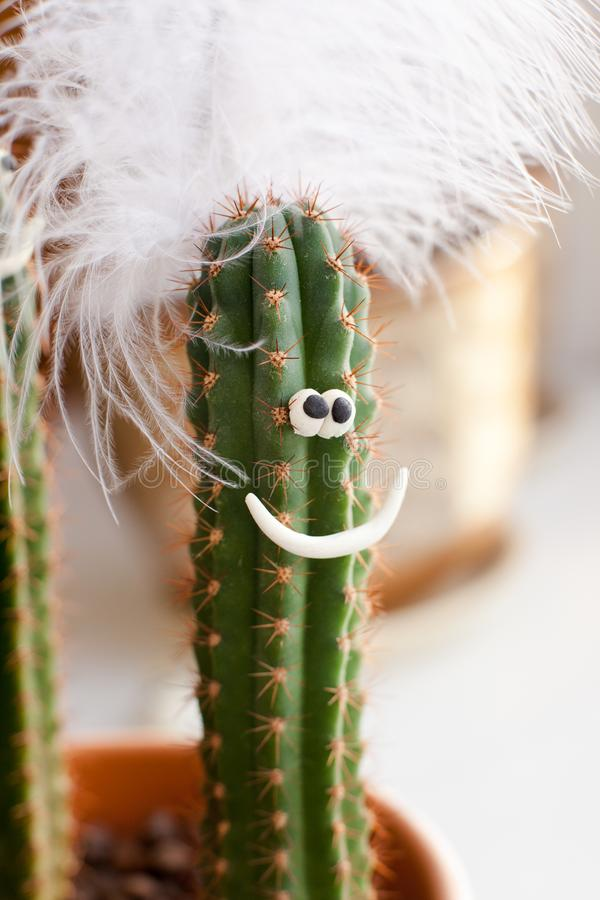 Concept - cactus in a flower pot with a funny face, decorated with a pen - an image of a fashionista, a secular diva, a show busin. Ess star stock photography