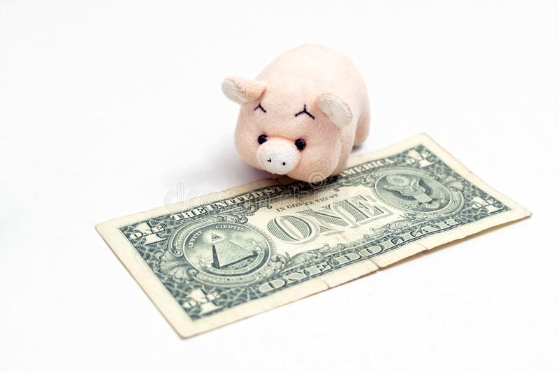 The concept of celebrating the New Year of the pig or financial savings. Toy pink piglet next to the one-dollar US note. Piggy royalty free stock image