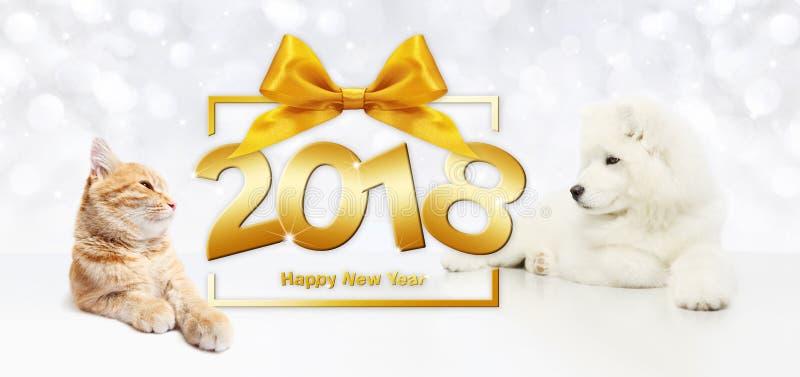Concept, chat et chien de bonne année d'animaux avec le cadre de boîte-cadeau illustration libre de droits