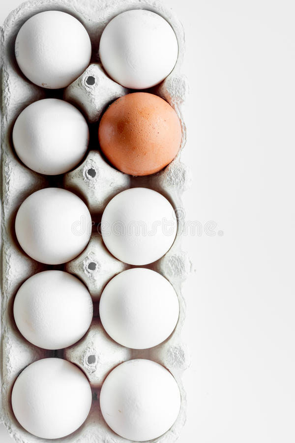 Concept of correct choice eggs on white background top view.  stock image