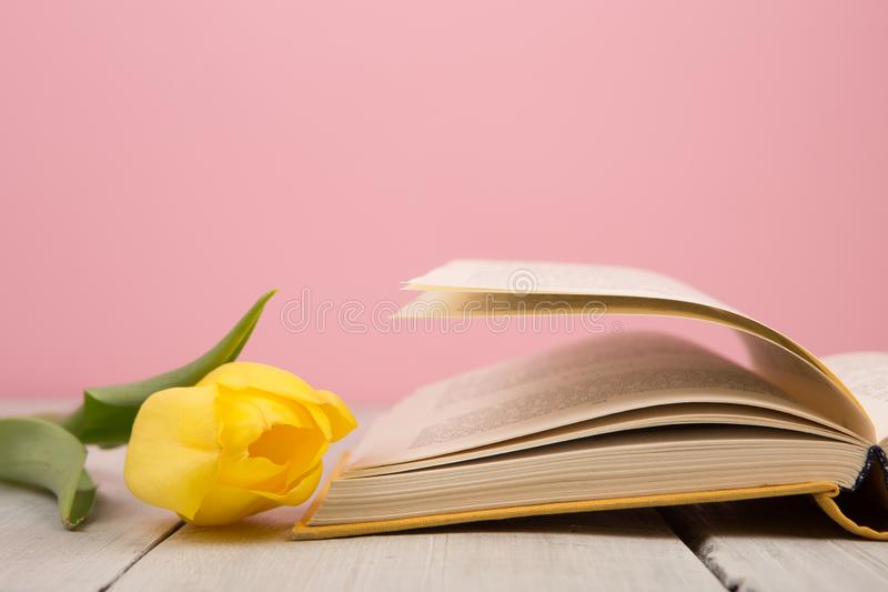 concept d'éducation et de lecture - livre ouvert avec feuilles de fleurs photos libres de droits