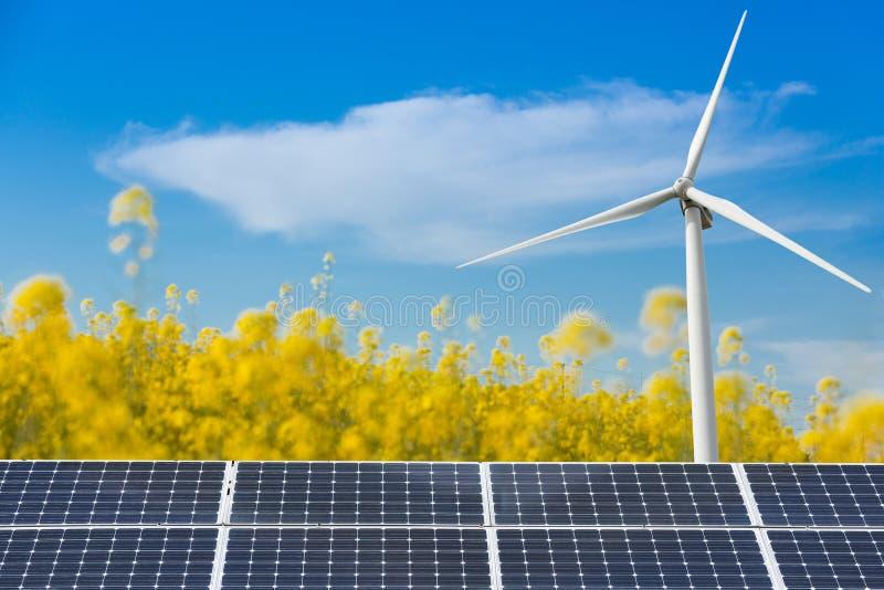 Concept d'énergie propre et renouvelable, gisement jaune de canola, panneaux solaires et générateur de vent photographie stock libre de droits