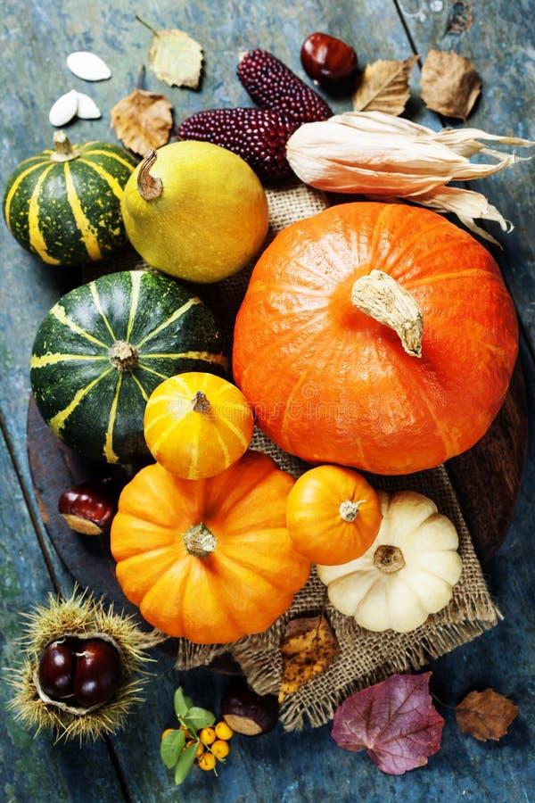 Concept d'automne avec les fruits et légumes saisonniers photo stock