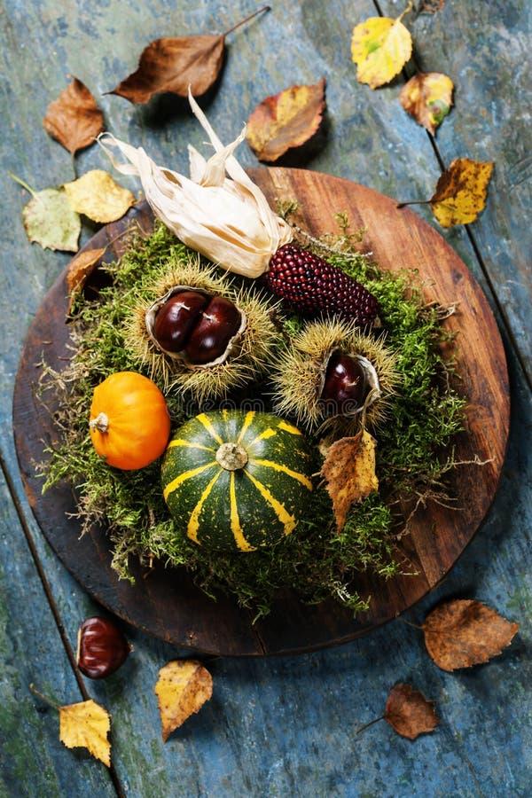 Concept d'automne avec les fruits et légumes saisonniers image libre de droits