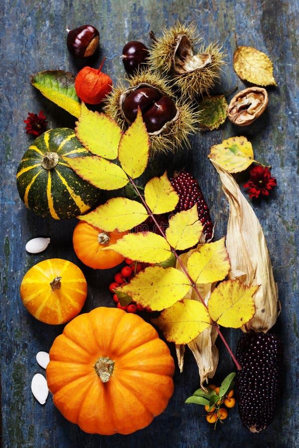 Concept d'automne avec les fruits et légumes saisonniers images libres de droits