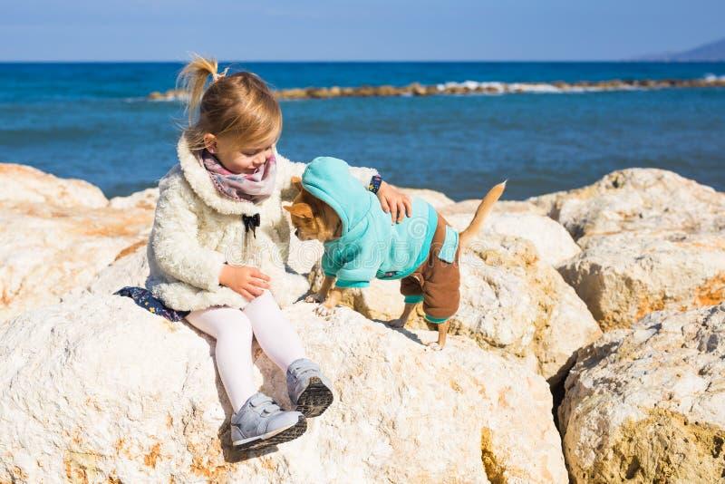 Concept d'enfant, d'animal familier, d'été et de vacances - petite fille avec le chien de chiwawa sur le bord de la mer images stock