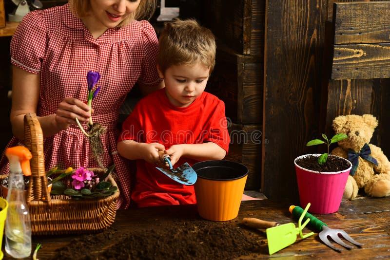 Concept d'engrais Peu d'enfant a mis l'engrais dans le pot Engrais pour la nouvelle plante verte dans le sol Engrais organique photos libres de droits