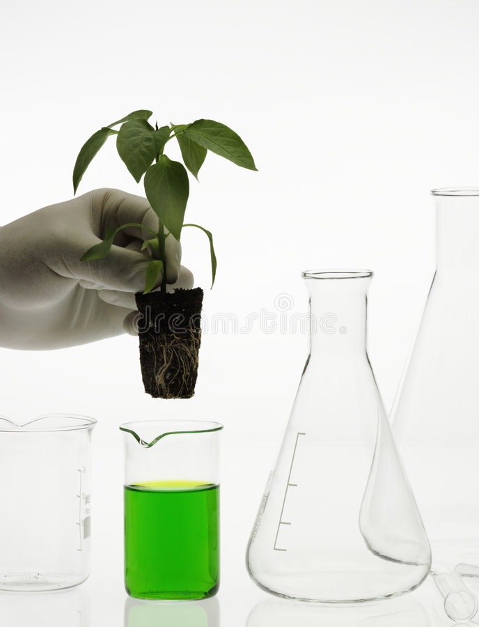 Concept de biotechnologie photo stock