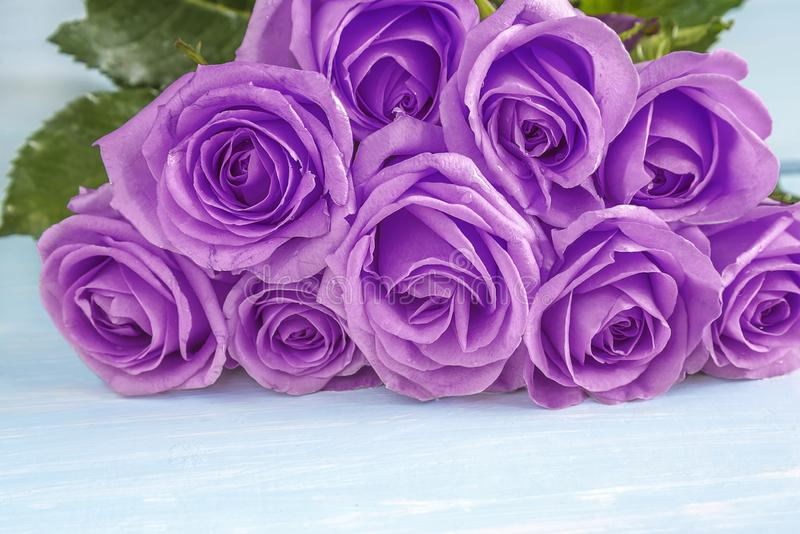 Concept de célébration avec le beau groupe de fleurs roses pourpres image stock