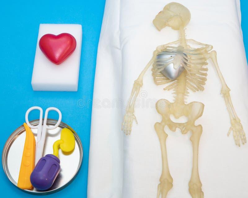 Concept de chirurgie de transplantation de coeur avec le corps humain images libres de droits