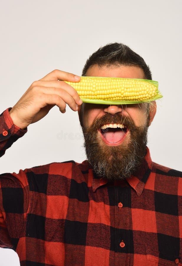 Concept de cultures de ferme et d'automne L'agriculteur avec le visage gai caché avec la bâche jaune de maïs observe photos libres de droits