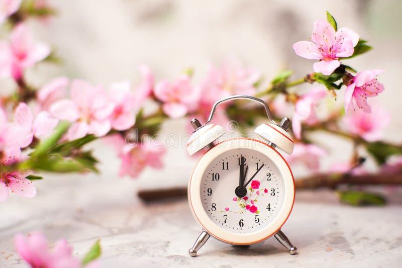 Concept de fleur de ressort Horloge, plan rapproché d'arbre de floraison et espace miniatures de copie Texture naturelle rose d'a image libre de droits