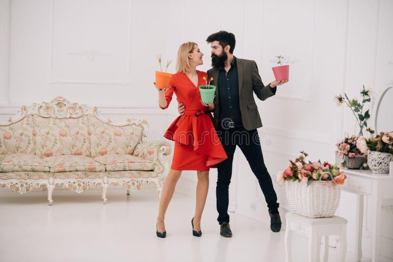 Concept de fleuriste Femme sensuelle et homme barbu dans le fleuriste Couples dans l'amour dans le fleuriste Achat en fleur image stock