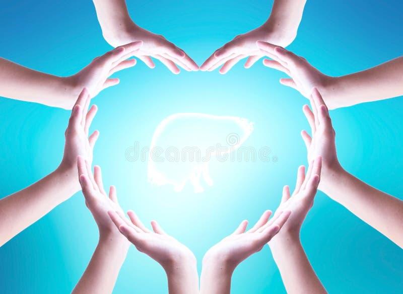 Concept de jour d'h?patite du monde : les gens font la protection en forme de coeur du foie ? la main image stock