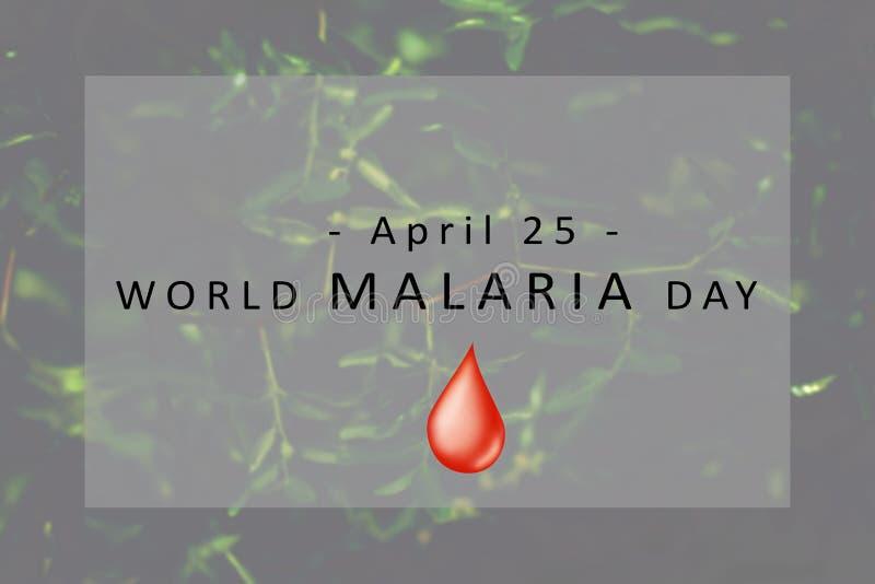 Concept de jour de malaria du monde photographie stock libre de droits