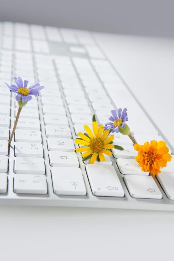 Concept de l'horticulture à partir de l'ordinateur photos stock