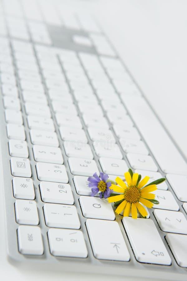 Concept de l'horticulture à partir de l'ordinateur photographie stock libre de droits