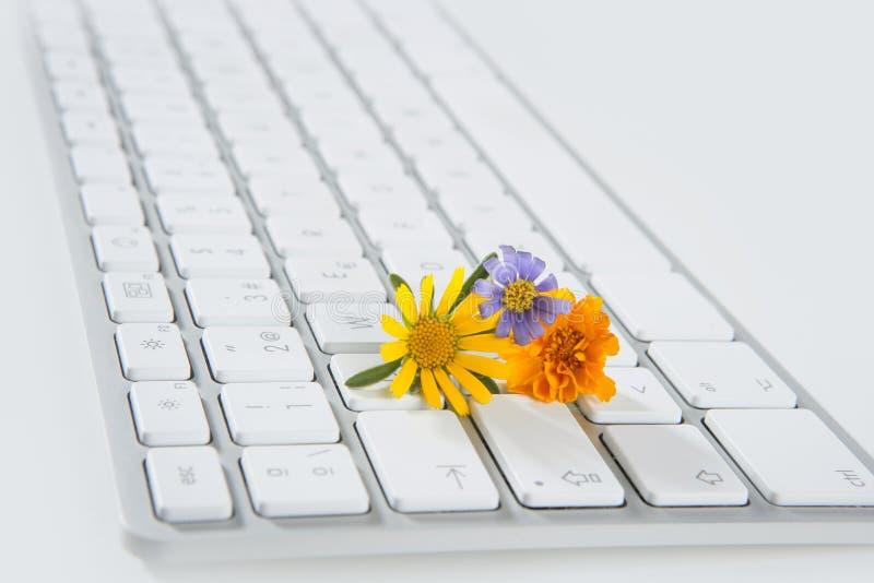 Concept de l'horticulture à partir de l'ordinateur photo libre de droits