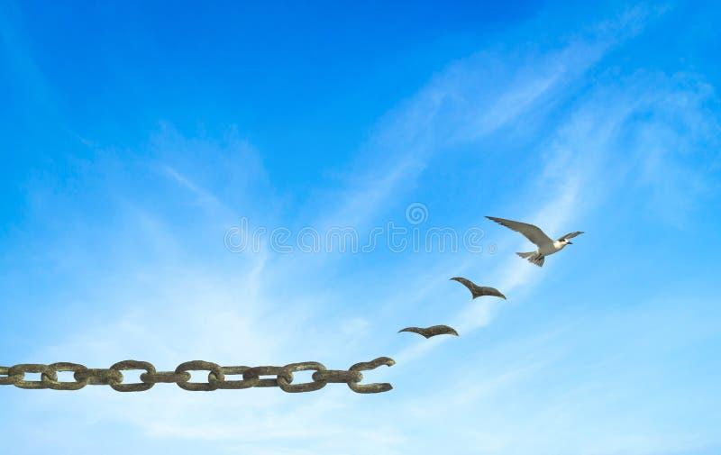 Concept de liberté photos stock