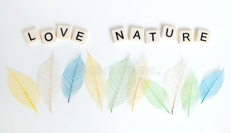 Concept de message de nature d'amour photos stock