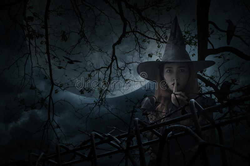 Concept de mystère de Halloween photo libre de droits