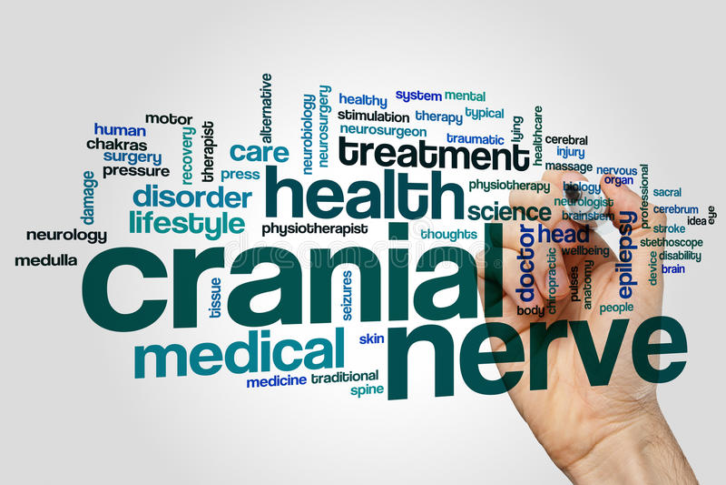 Concept de nuage de mot de nerf crânien sur le fond gris photo libre de droits