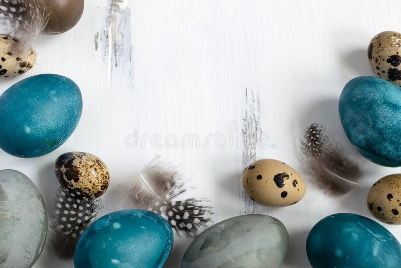 Concept de Pâques de ressort, - a naturellement teint des oeufs de pâques, oeufs de caille, plumes, fond en bois blanc, l'espac photo stock