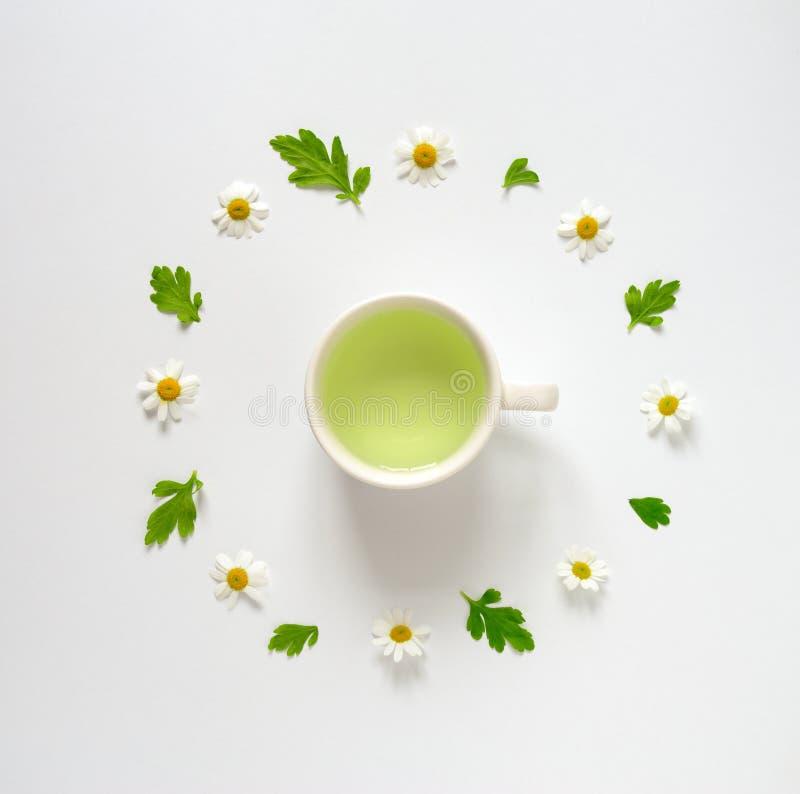 Concept de thé de camomille photos libres de droits