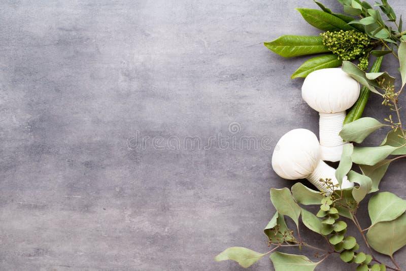 Concept de traitement de station thermale, composition étendue plate avec les produits cosmétiques naturels et brosse de massage, image libre de droits