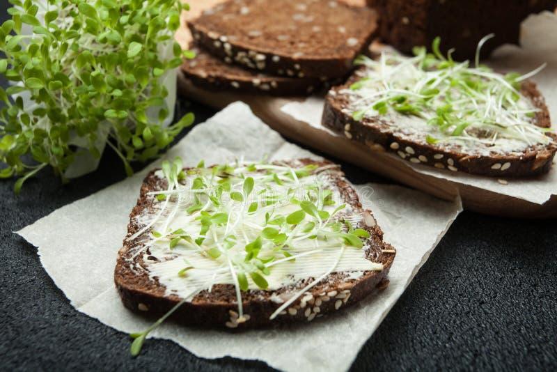 Concept de végétarien et de la consommation saine Salade de verts micro et pain noir image libre de droits
