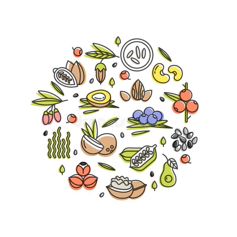 Concept de vecteur de Superfood Baies, écrous, fruits de légumes et graines Superfoods organiques pour la santé Detox et weightlo illustration libre de droits