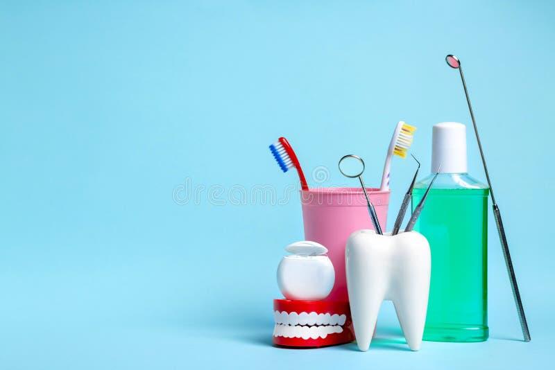 Concept dentaire de sant? et de teethcare Miroir dentaire avec des sondes d'explorateur dans le modèle blanc sain de dent près du photo stock
