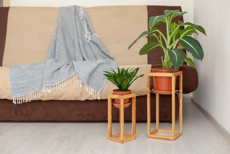 Concept des éléments décoratifs, conception dans l'intérieur Photo de bon photo libre de droits
