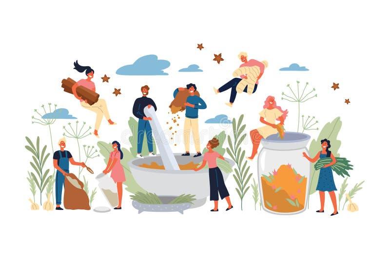 Concept des épices, des herbes, de la nourriture et de l'Ayurveda illustration libre de droits
