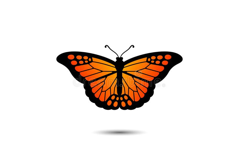 Beautiful Monarch Butterfly royalty free illustration