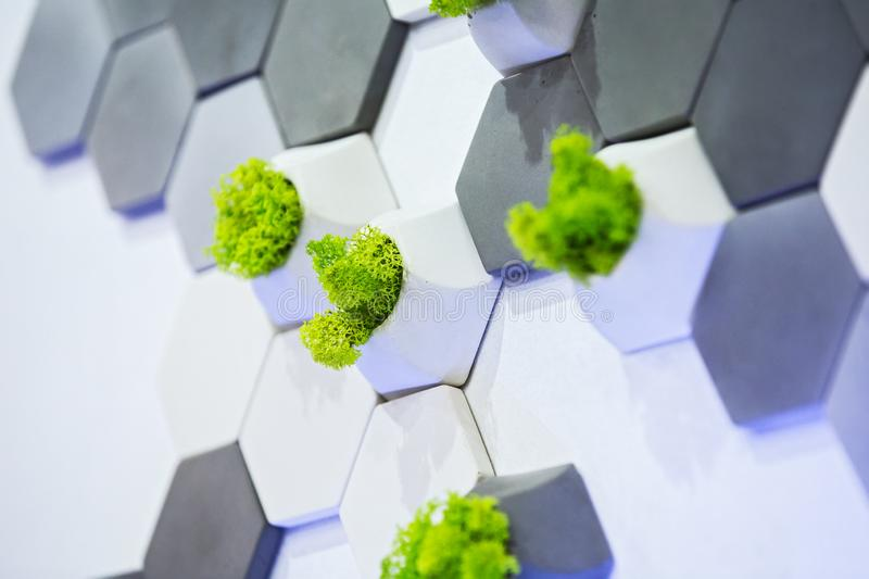 Concept design of the wall, white and gray concrete bricks and moss growing in them. Ecological office decor.  royalty free stock images