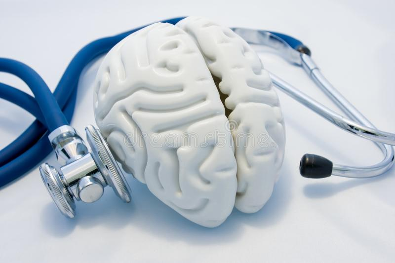 Concept of diagnosis and treatment of mental and psychological health. Anatomical model of empty brain is on white background and. His diagnoses stethoscope royalty free stock photos